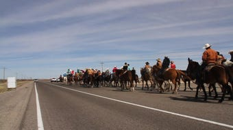 Hundreds of American and Mexican cavalry members ride to Columbus, New Mexico to kickoff the 20th annual Binational Cavalry.