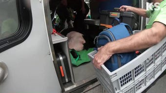 See the bear, which is recovering at the PAWS Wildlife Center in Lynnwood.