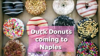The shop will create customizable, made-to-order doughnuts in Park Shore Plaza.