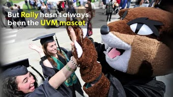 Boosters started raising money to bring the UVM mascot to downtown Burlington in 2017. The Catamount mascot Rally, has changed over the years.