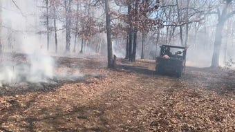 Nature Conservancy crews burn forest floor to restore Ozark ecosystem