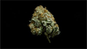 DHSS released the first draft of rules on how to obtain a medical marijuana ID card to possess and/or grow weed.