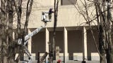 Work was being done Tuesday to remove four horse chestnut trees in poor condition from the grove of trees at Milwaukee's Marcus Center for the Performing Arts