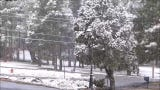 A snow storm refreshes the Ruidoso area April 13