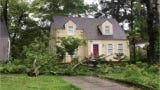 Severe weather swept in Mississippi Thursday, downed trees and left thousands without power.