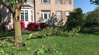 Several communities south of Bear suffered wind damage which knocked down trees or snapped their limbs Friday.