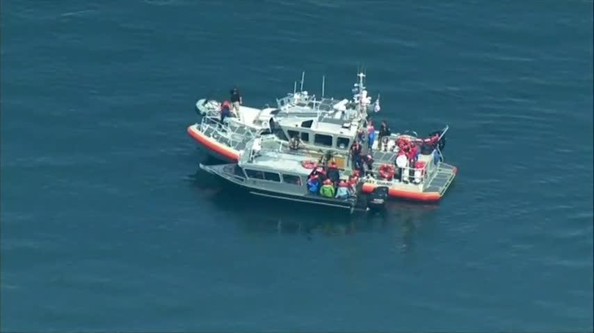 US Coast Guard rescued dozens of whale watchers