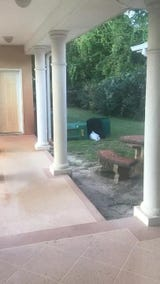 Jerome Winston shared this video with the News Journal of a black bear digging through his trash in Navarre on a Sunday afternoon.