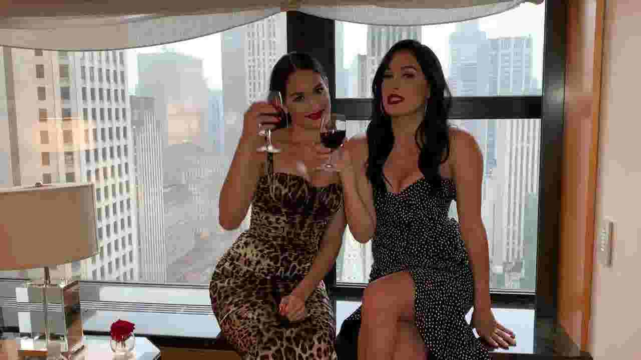 Bella Twins go from WWE Diva champs to Napa Valley winemakers. Meet them at W+F Experience