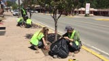EcoServants of Ruidoso spent the day cleaning planters along Sudderth dr. Corps members spend 1700 hours yearly maintaining trails and cleaning up.