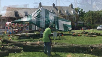 Hard wind during Tuesday's night's storm cracked a tree at Holy Rosary Catholic Church Carnival in Claymont, dropping a limb onto a crowded tent.