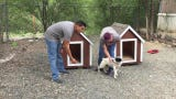 The Ruidoso High School Construction Trades class spent the quarter building dog houses. Four of them were donated to the animal shelter and are now being offered to the first four adopters