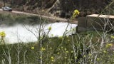 United Water Conservation District is releasing 180,000 gallons per minute at Santa Felicia Dam at Lake Piru.