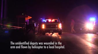 A Wood County Sheriff's deputy was shot while responding to a report of a suicidal person near Arpin, Wis. The deputy was flown to a local hospital.