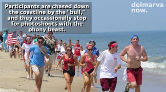 Dewey Beach's now-traditional event, Running of the Bull, returns to The Starboard for a 23rd year. It takes place Saturday, June 29.