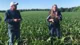 Steven and Kayla Finton talk about planting and harvesting corn on their farm on County Road 170. They have about 1,200 acres of corn and soybeans.