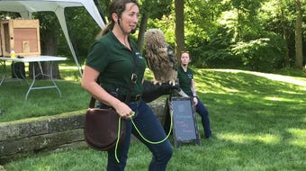 Becky Geiger of Miami Valley Falconry shows of a Eurasian Eagle Owl during a presentation on Clary Gardens and educates on its physiology and habits.