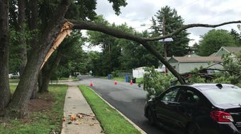 While storm damage closed roads across South Jersey, drivers were simply able to drive under a fallen tree limb at Caldwell and Plymouth roads in Cherry Hill.