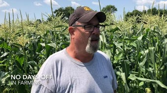 Poulson's Farm delivers hand-picked, very fresh corn to the New Berlin Lions corn roast at Wisconsin State Fair