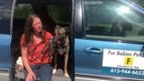 Founder of 'Fur Babies' Pet Taxi, Stacey Poindexter explains why she quit her job to pursue her new business.