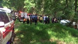 Raw Video: Small plane crashes in woods near Churchmans Road