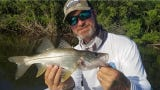 Snook fishing has been and should remain good.